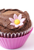 Miniature chocolate cupcake with flower — Stock Photo