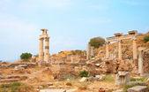 Ruins of columns in ancient city of Ephesus — Stock Photo