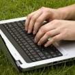 White male hands typing on a laptop keyboard on a lawn — Stock Photo