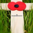 Stock Photo: Remembrance cross
