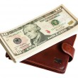 Stock Photo: Wallet and Dollars