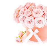 Garnek róż — Zdjęcie stockowe