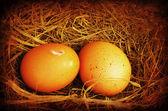 Iki altın grungy yumurta — Stok fotoğraf