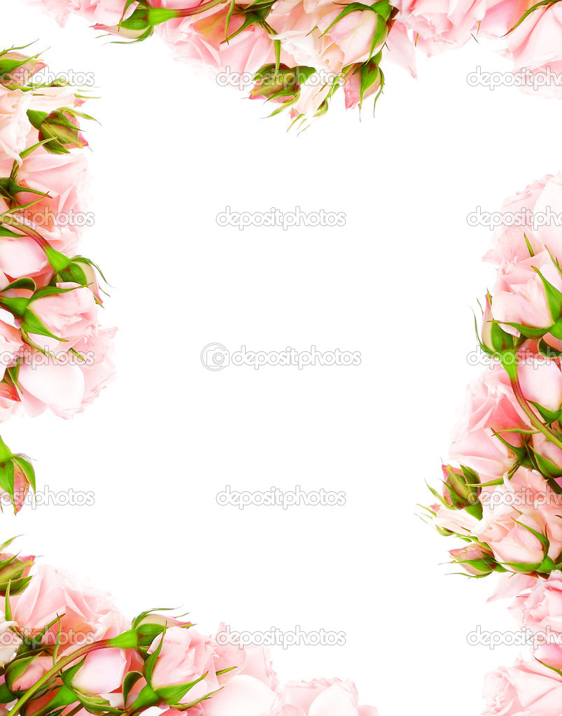 Rose Borders and Frames