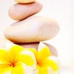 Spa stones & flowers — Stock Photo #5221892