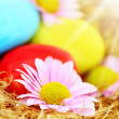 Decorative Easter eggs - Stock Photo