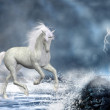 White unicorn — Stock Photo
