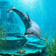 Stock Photo: Oceanworld 3