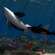 Stock Photo: Oceanworld 2