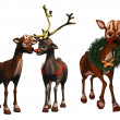 Rudolph and rhonda — Stock Photo #5189523