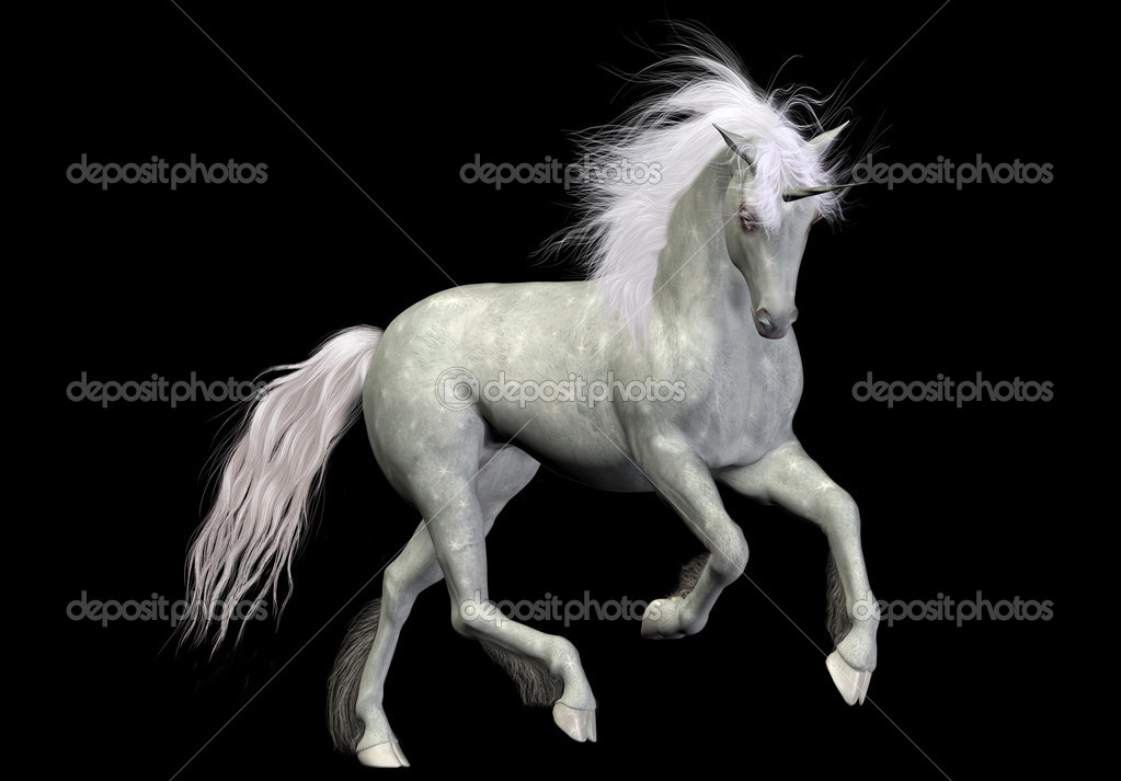A beautiful white unicorn - isolated on black — Stock Photo #5187880