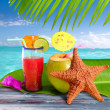 Coconuts cocktails straw tropical beach starfish — Stock Photo #5122826