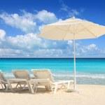 Caribbean beach parasol white umbrella hammocks — Stock Photo