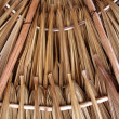 Palm tree leaves in sunroof palapa hut roofing - Stock Photo