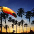 Toco toucan bird in tropical palm tree sunset sky — Stock Photo