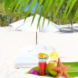 Coconut and cocktail beverages in palm trees — Stock Photo