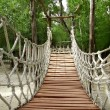 Adventure wooden rope jungle suspension bridge - Stock Photo