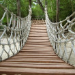 Adventure wooden rope jungle suspension bridge — Foto de stock #5124471
