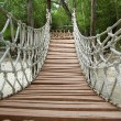 Adventure wooden rope jungle suspension bridge — Stock Photo