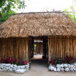 Mayan Mexico wood house cabin hut palapa — Stock Photo