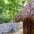 Stock Photo: Hut palapmexicjungle Mayhouse roof wall