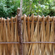 Mayan palm tree leaves wood fence in rainforest - Stock Photo