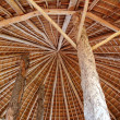 Hut palapa traditional sun roof wiev from above — Stock Photo #5124610