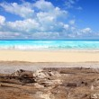 Caribbean tropical beach from weathered limestone — Stock fotografie