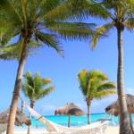 Карибский пляж гамак и пальмовых деревьев — Стоковое фото