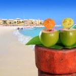 Playa del Carmen mexico Mayan Riviera beach — Stock Photo