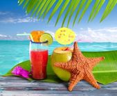 Coconuts cocktails straw tropical beach starfish — Stock Photo