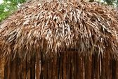 Hut palapa mexican jungle Mayan house roof wall — Stock Photo