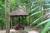 Jungle palapa hut sunroof in Mexico Mayan riviera — Stock Photo