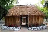 Mayan Mexico wood house cabin hut palapa — Stock Photo