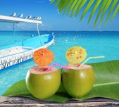 Coconuts straw cocktails in tropical caribbean beach — Stock Photo