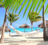 Caribbean beach hamak ve palmiye ağaçları — Stok fotoğraf
