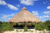 Big Palapa hut sunroof in Mexico jungle — Stock Photo