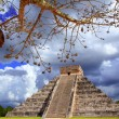 Royalty-Free Stock Photo: Chichen Itza dramatic sky under tree branches Mexico