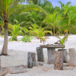 Stock Photo: Coconut Tulum palm trees beach table and seats