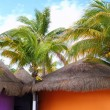 Tropical Caribbean Palapas hut coconut palm trees - Stock Photo