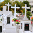 Caribbean cemetery catholic angel saints figures — Stock Photo #5283076