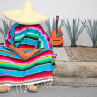 Mexican lazy man sit serape agave guitar nap siesta — Stock Photo