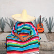 Mexican lazy man sit serape agave guitar nap siesta - Stock Photo