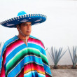 Handsome mexican man charro hat serape agave — Stock Photo #5283554