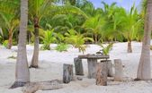 Coconut Tulum palm trees beach table and seats — Stock Photo