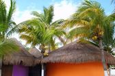 Tropical Caribbean Palapas hut coconut palm trees — Stock Photo