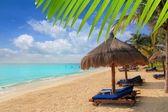 Mayan Riviera beach palm trees sunroof Caribbean — Stock Photo