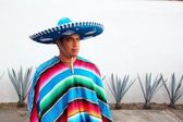 Handsome mexican man charro hat serape agave — Stock Photo