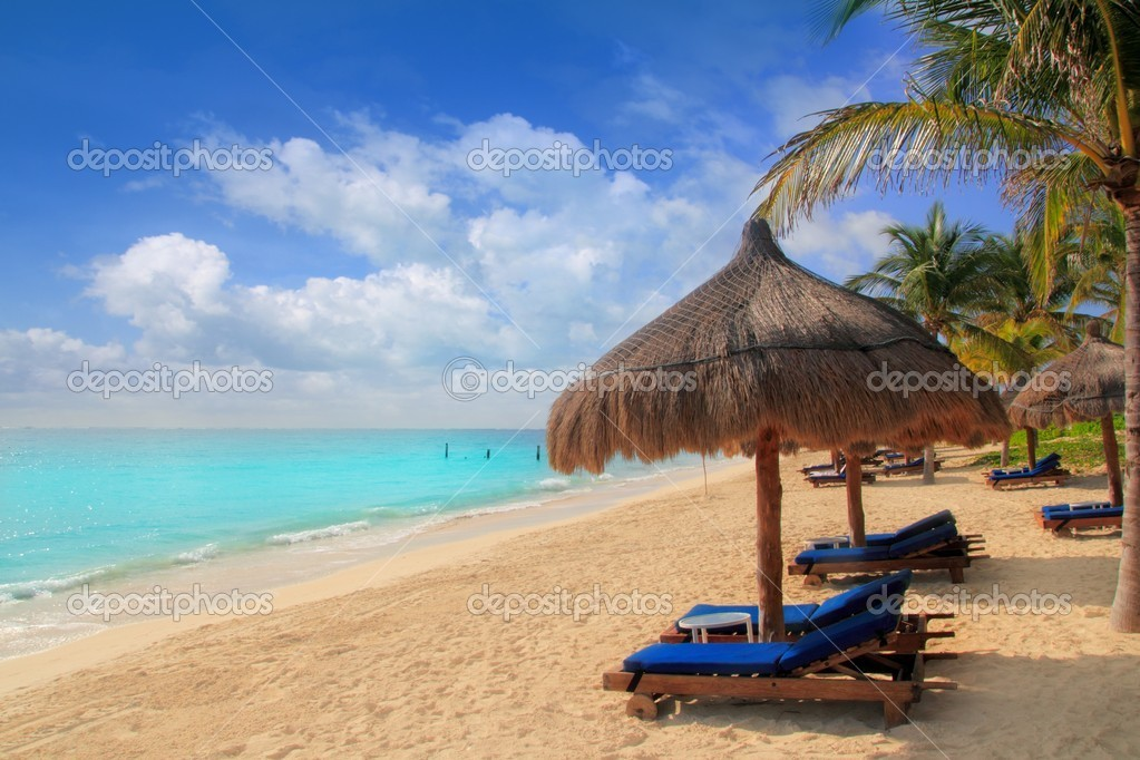 Mayan Riviera Beach Palm Trees Sunroof Caribbean Stock