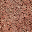 Cracks red earth — Stock Photo
